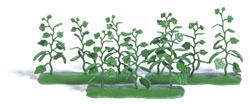 9 Gurkenpflanzen H0