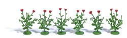 6 Klatschmohnpflanzen H0