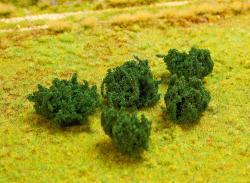 5 PREMIUM Bramble hedges