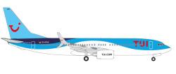 Boeing 737-800 TUI fly Deutschland