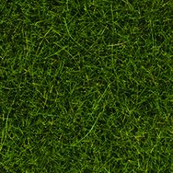 Wildgras dunkelgrün 100 g