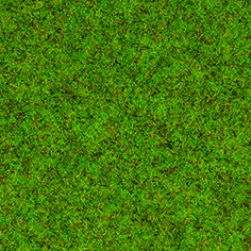Scatter Grass Spring Meadow 2,5mm