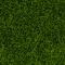 Noch 07097 Wildgras XL hellgrün 80 g