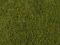 Noch 07291 Wiesen-Foliage, mittelgrün