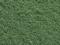 Noch 07341 Struktur-Flock, hellgrün, mittel 15 g