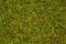 Noch 08155 Gras Blumenwiese 2,5 mm